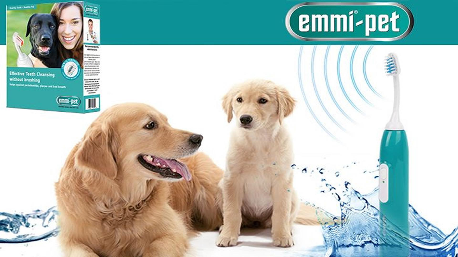 Schema Elettrico Ultrasuoni Per Cani : Collare antiabbaio a ultrasuoni funzionano ecco migliori